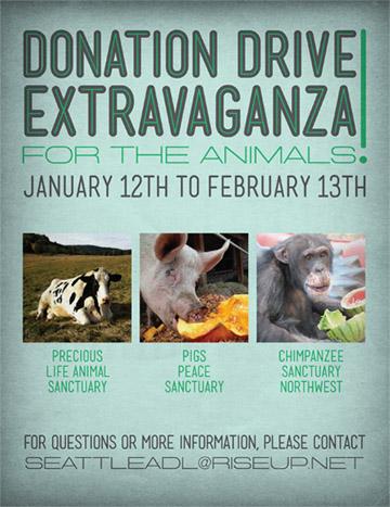 donation drive extravaganza flyer