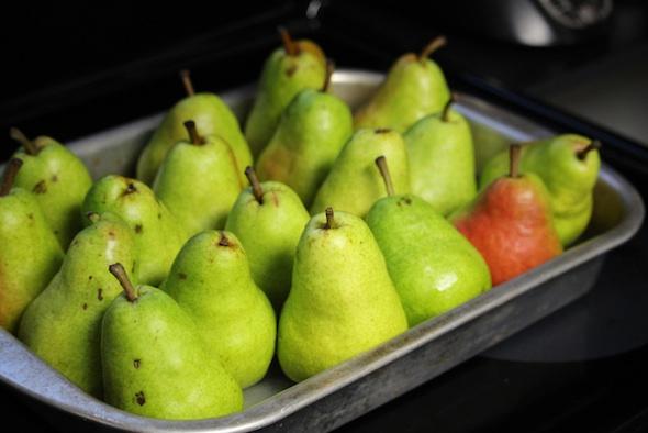 web_pears_pre-baking_dm_IMG_0015