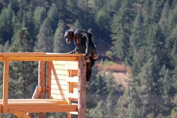 web_jamie_climb_jamies_tower_kd_IMG_4364
