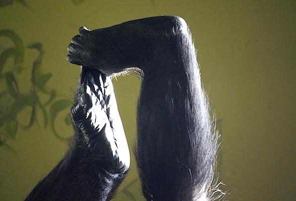 web_annie_feet_grasping_closeup_kd_IMG_6776