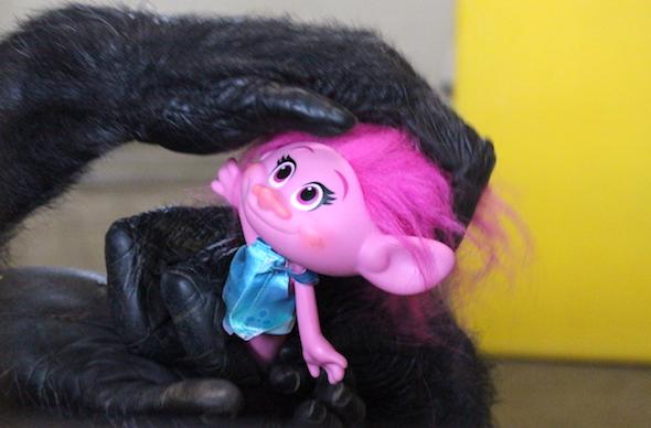 Foxie holding Poppy troll